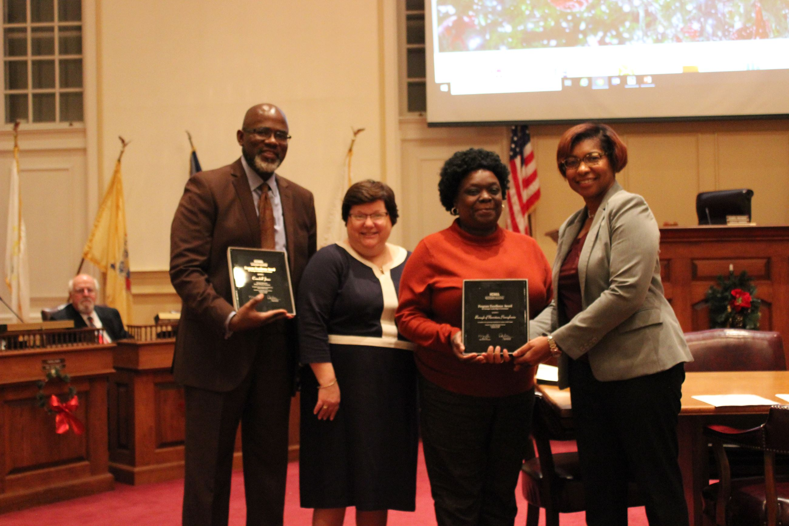 ICMA Excellence In Local Government Program Award